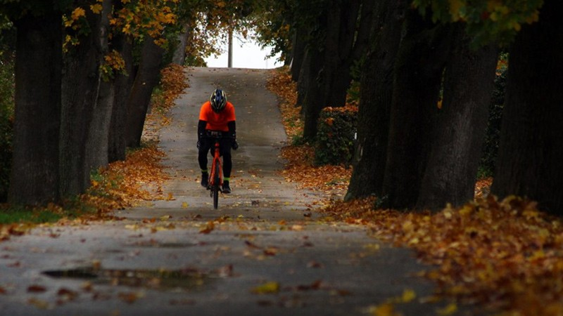 Pedal Power – The Unstoppable Growth of Cycling