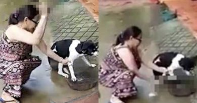 Anjing disiksa majikan